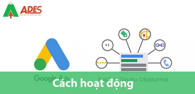 Cach hoat dong